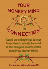 Your Money Mind Connection